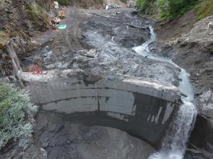 Site Area & Partial Dam Removal